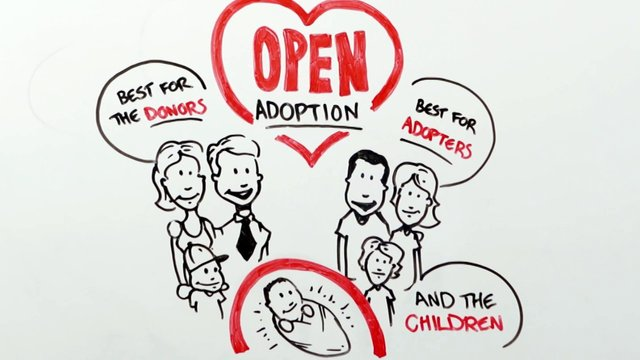 open adoption In some ways, the process of open adoption was incredibly simple in other, it was far more complicated than we ever imagined several months ago, my son, micah.