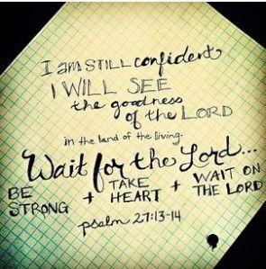 psalm 27 13-14